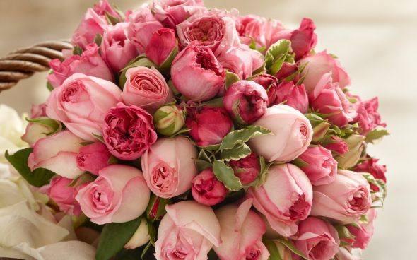 Самые дешевые цветы в тюмени